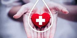 Hemocentros se unem em campanha no Dia Nacional do Doador de Sangue